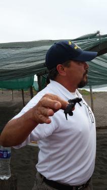 Conservationist holding a hatchling
