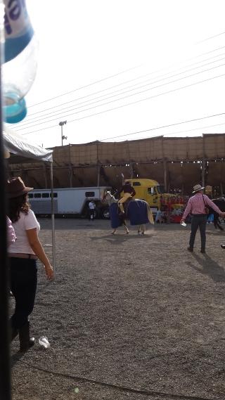 Picador riding into the bullring