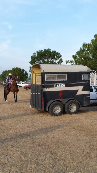 """Note the name """"gringo"""" on the horse van....."""