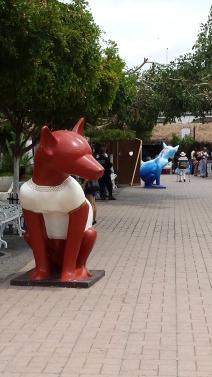 Colima dog
