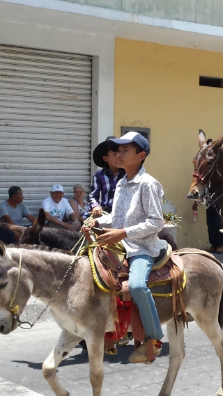 Two boys on burros