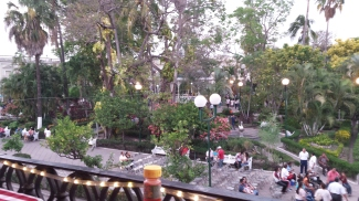 View of the jardín from the balcony of the restaurant.